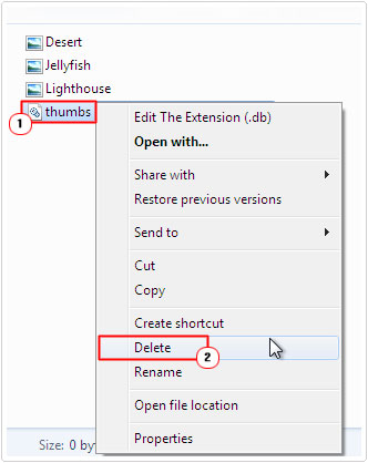 Select and Delete thumbs.db file