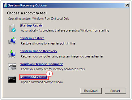 Systems Recovery Options -> Command Prompt