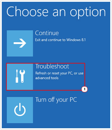 Choose an option -> Troubleshoot