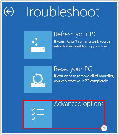 Troubleshoot -> Advanced Options