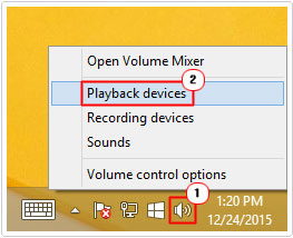 Speakers -> Playback Devices