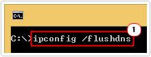 cmd -> type ipconfig /flushdns