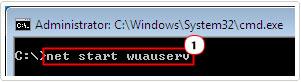 cmd -> net start wuauserv