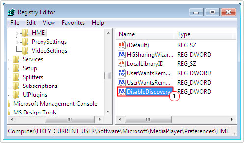 access DisableDiscovery registry key