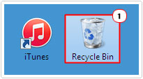 double click on recycle bin